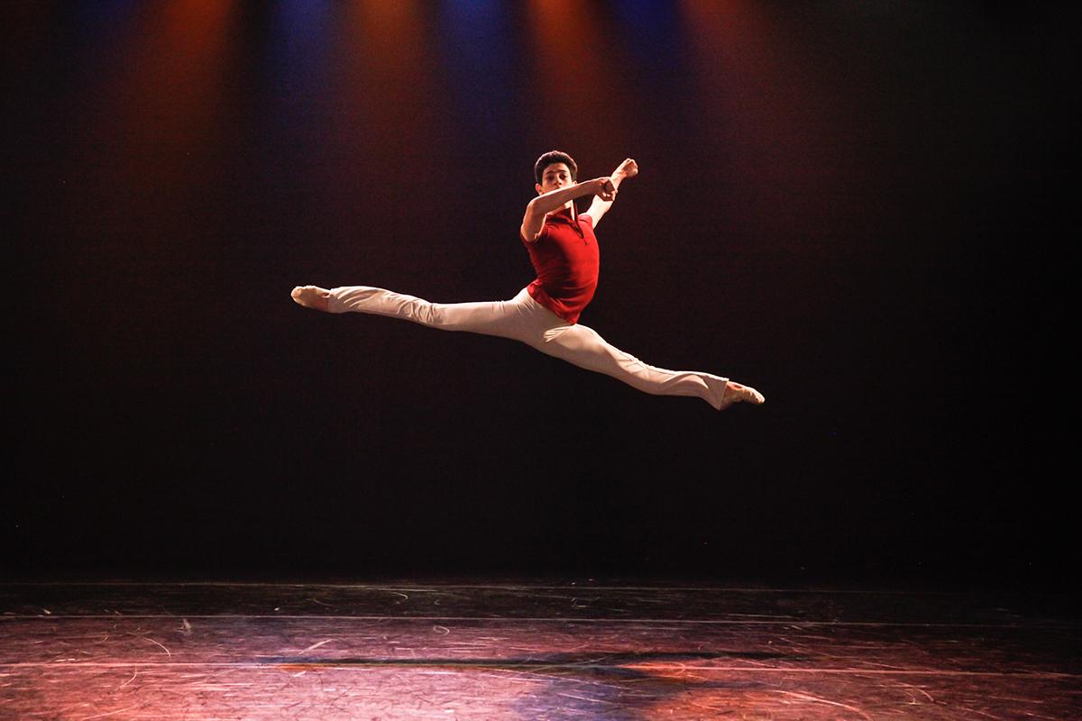 encontro-estudos-coreograficos-12