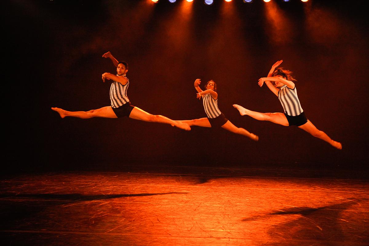 encontro-estudos-coreograficos-13